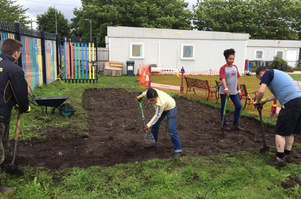 Greenhouse - Volunteers